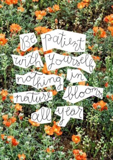 Nature is patient.jpg