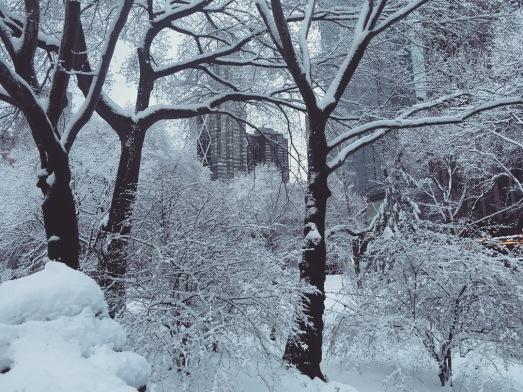 CP Snow